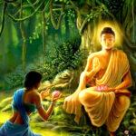 Lama-Fera Healing